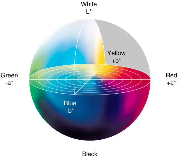 color space wheel.png