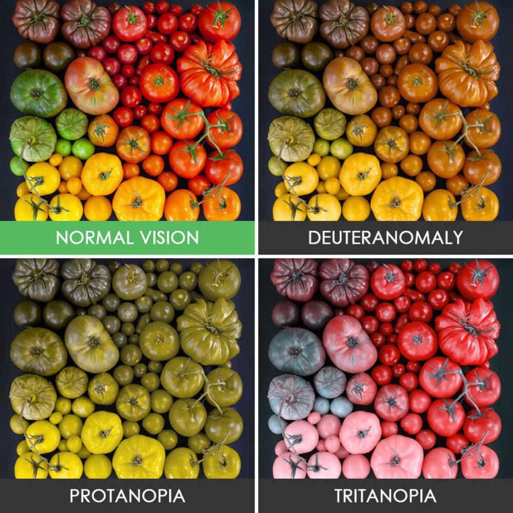 comment-voient-les-daltoniens-21.jpg
