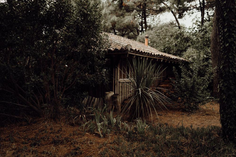 cap-ferret-garden