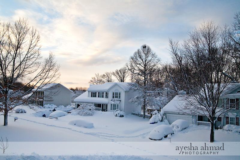 snow11.jpg