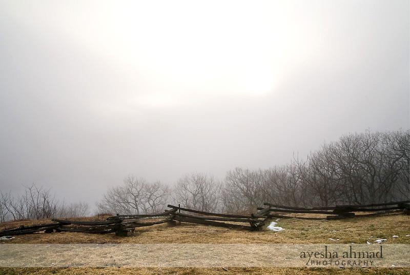 Wintergreen2010-111