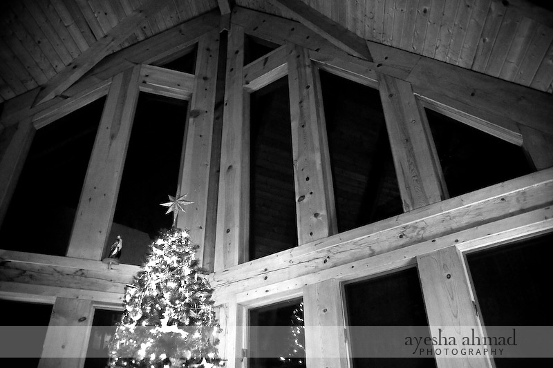 Wintergreen2010-157