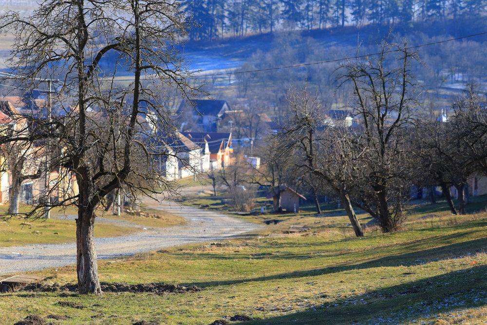 Village life -