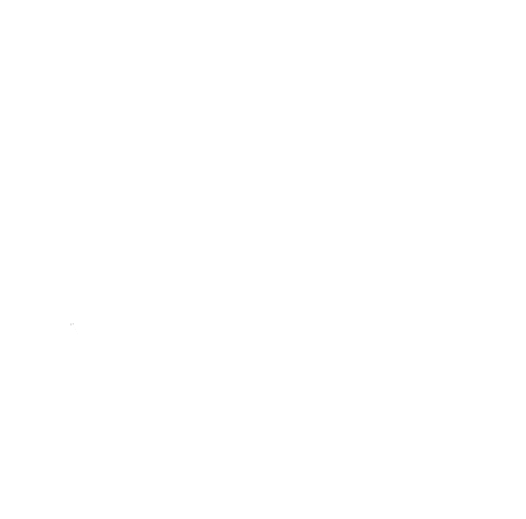 The Hand-cut Collection — Kaila Fusco Designs