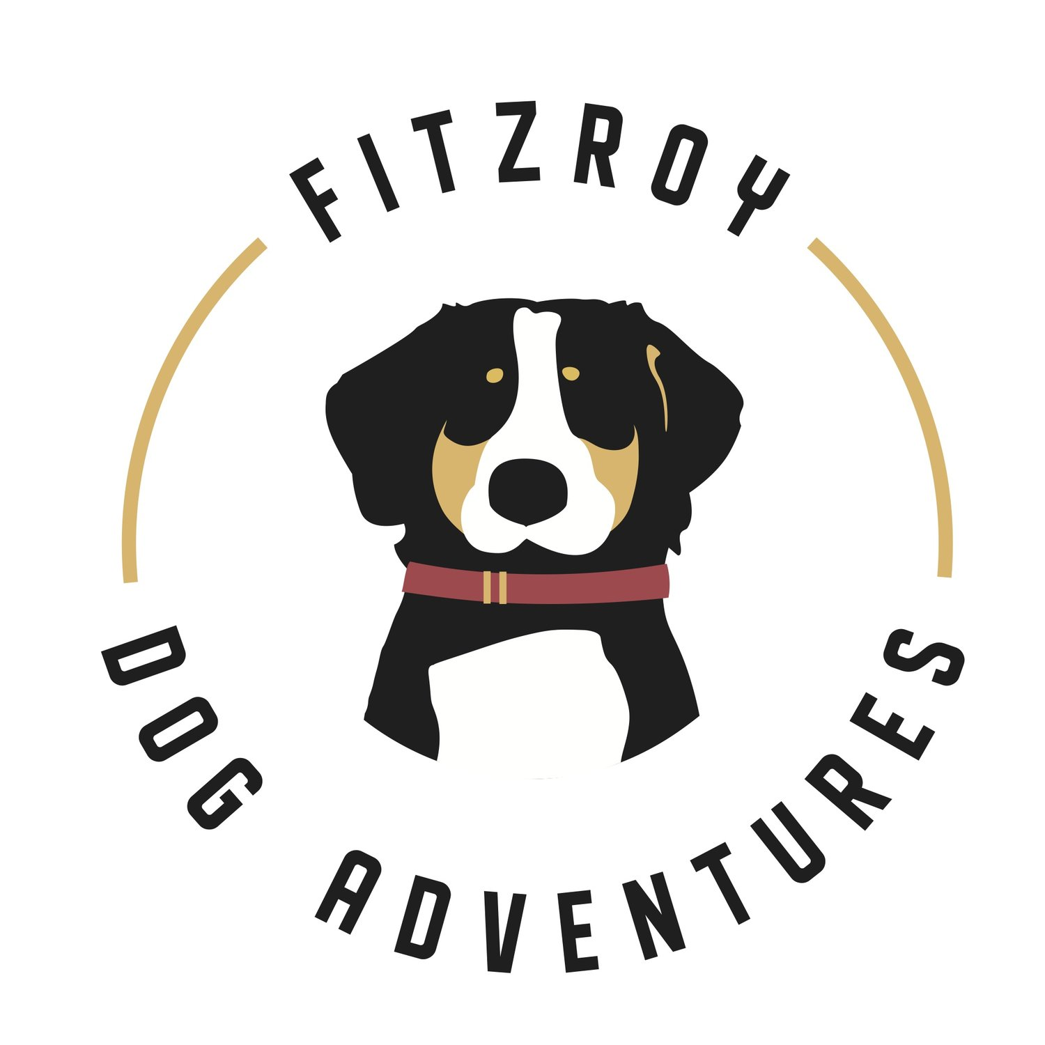 Fitzroy Dog Adventures