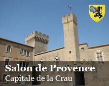 Salon : capital of Crau