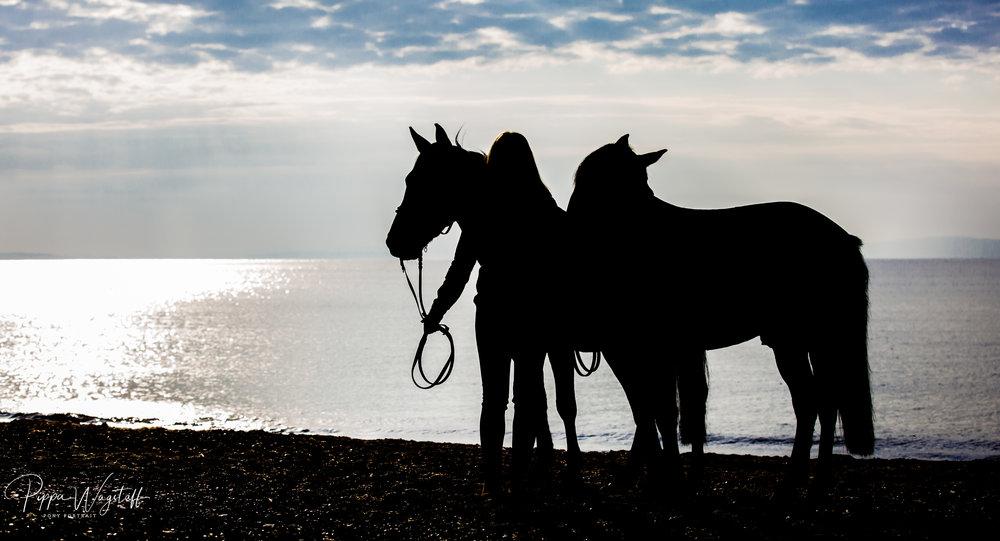 Beach_sunrise_with_two_horses.jpg