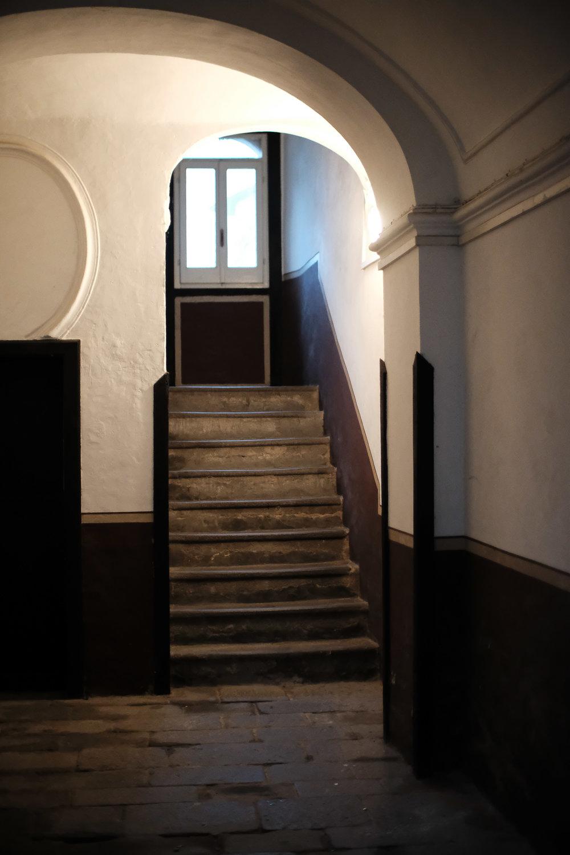 gallery_198.JPG
