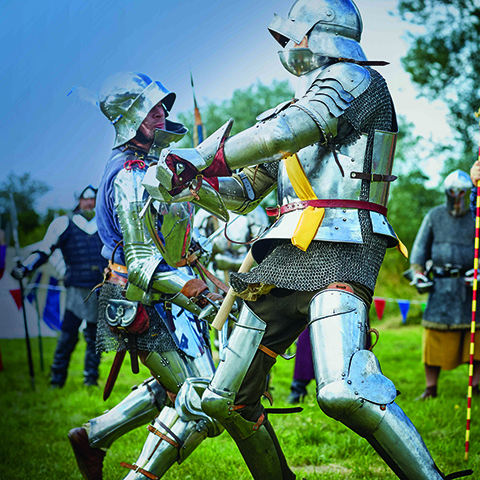 Warkworth_-_fighting_Knights.jpg
