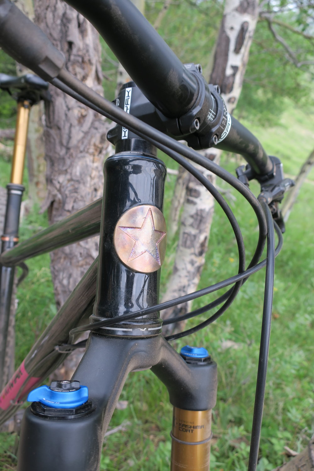 Head tube badge detail