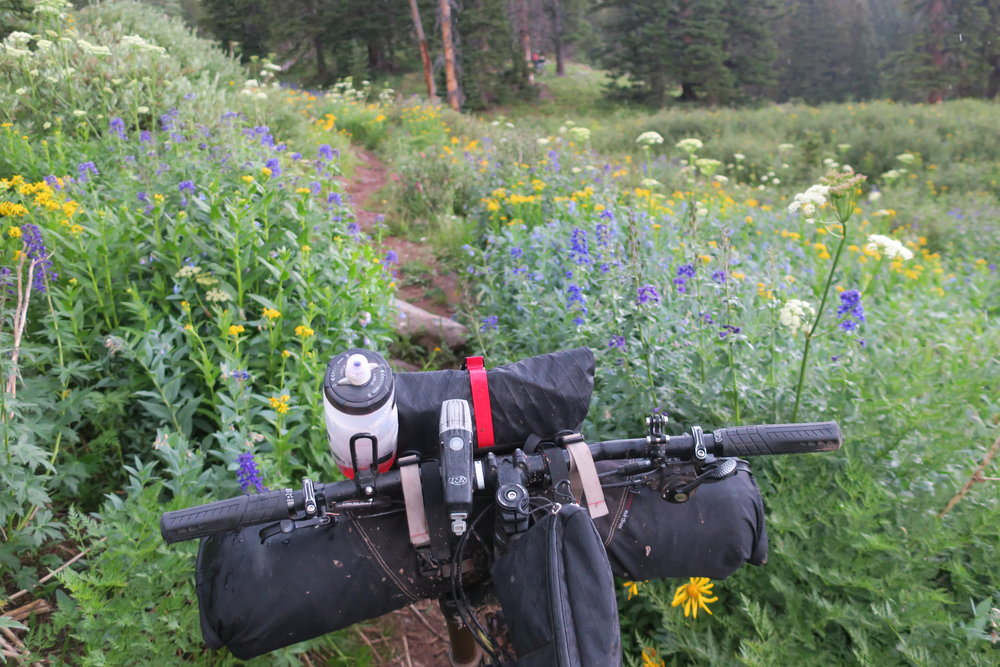 Cockpit and wild flowers