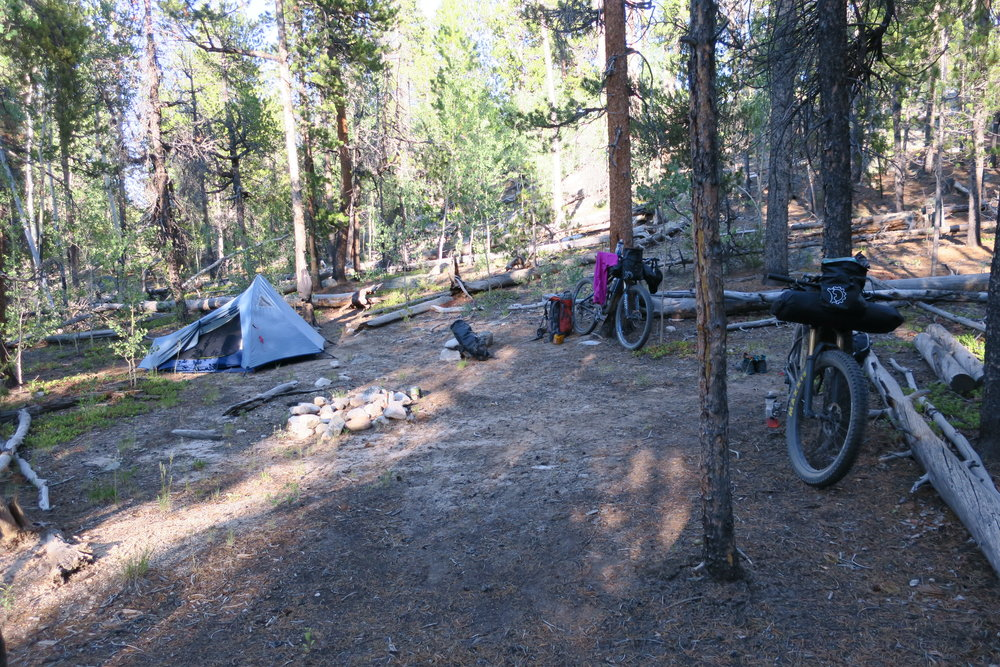 Campsite near Brown's Creek
