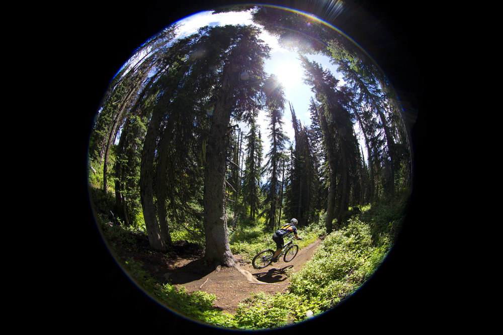Singletrack 6 Silverstar Mtn. Resort,  British Columbia