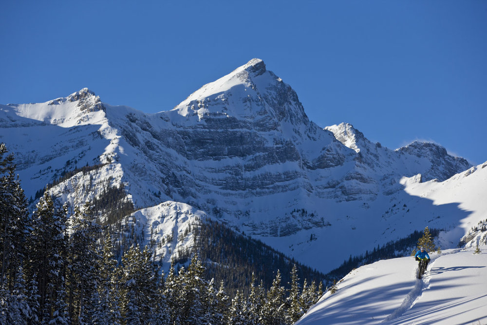 Torben Jensen Peter Lougheed Provincial Park, Alberta