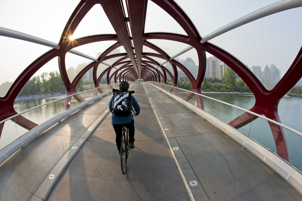 Lance Hamilton Calgary, Alberta