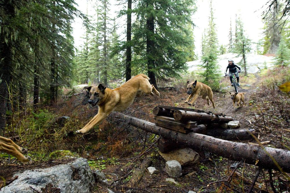 Oliver & Travis Hauck Krestova, British Columbia
