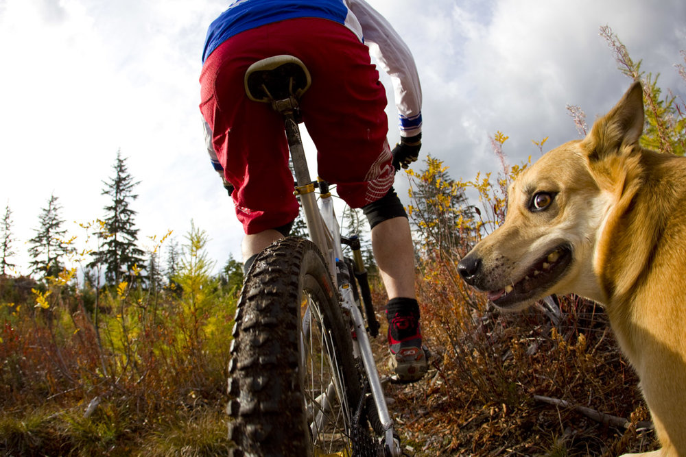 Ned Woods & Pitou Beasly, British Columbia