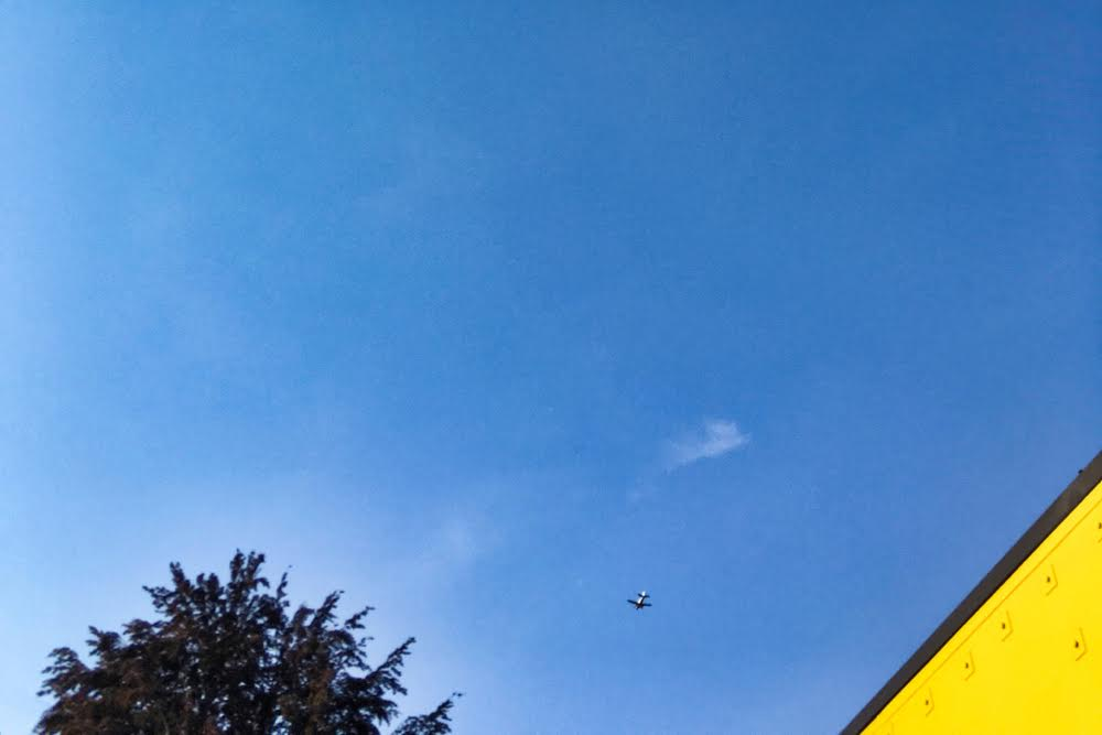 Blue Skies and Airplane by Michael Montez