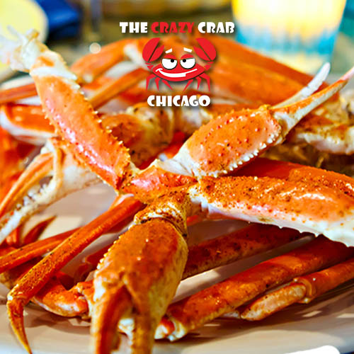 the-crazy-crab-chicago-strategy-driven-marketing-social-media-experts-1.jpg