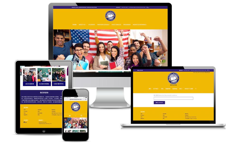 global-school-access-websites-graphic-design-top-creative-agencies-chicago-milwaukee-minneapolis-madison.jpg