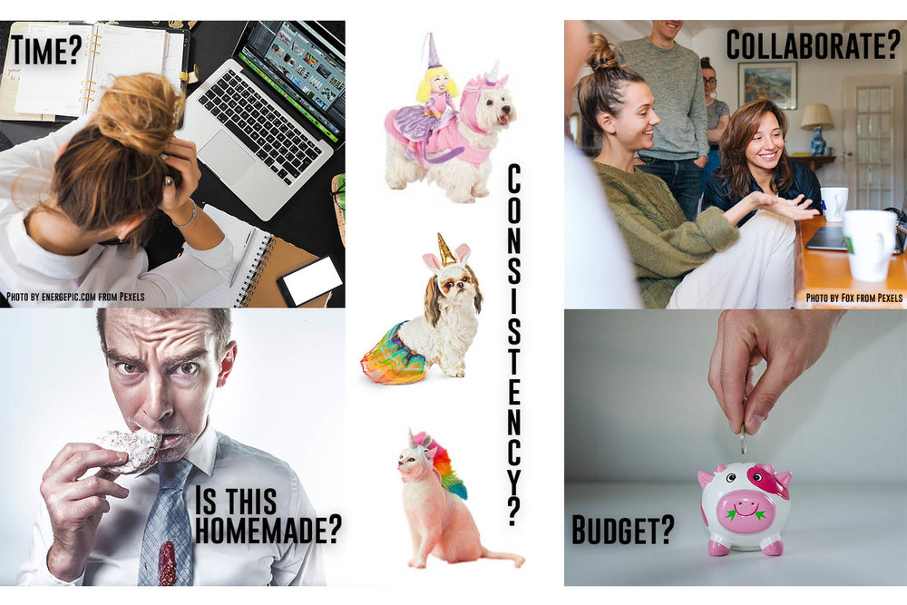 Picture of a women asking if she has time, three different animals wearing inconsistent unicorn costumes, young people collaborating on a computer, a man asking if a cookie is homemade, and a piggy bank asking if a budget is set.