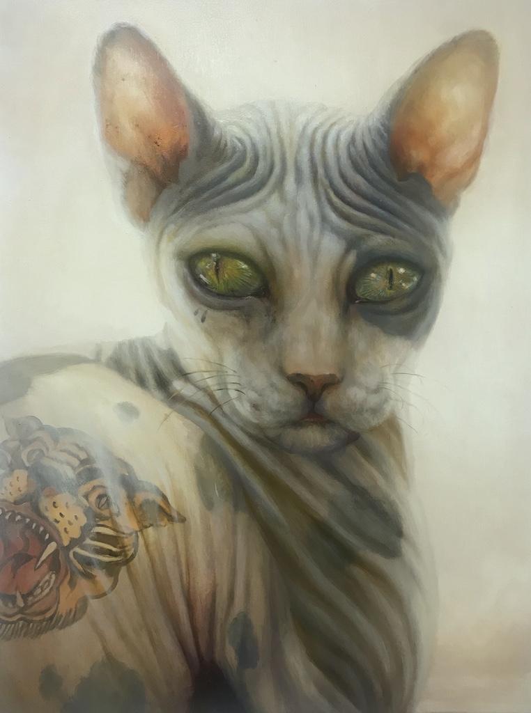 """""""Wildcat"""""""