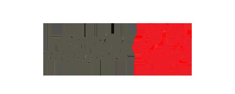 SOI-logo.png