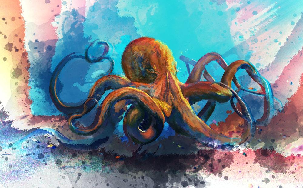octopus (2).jpg