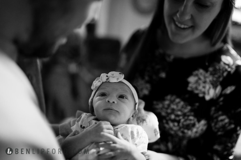 Elizabeth Dalton Newborn HITL (2 of 12).jpg