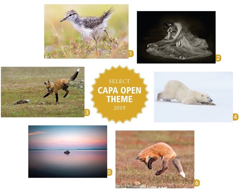CAPA Open-Select.jpg