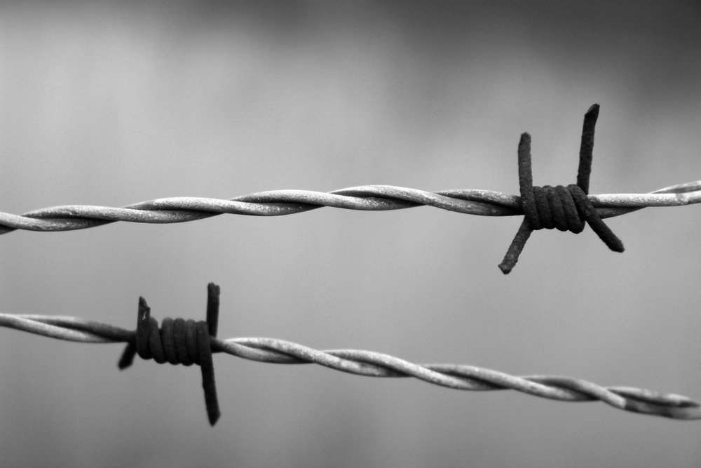 barbed-wire-1269430_1920.jpg