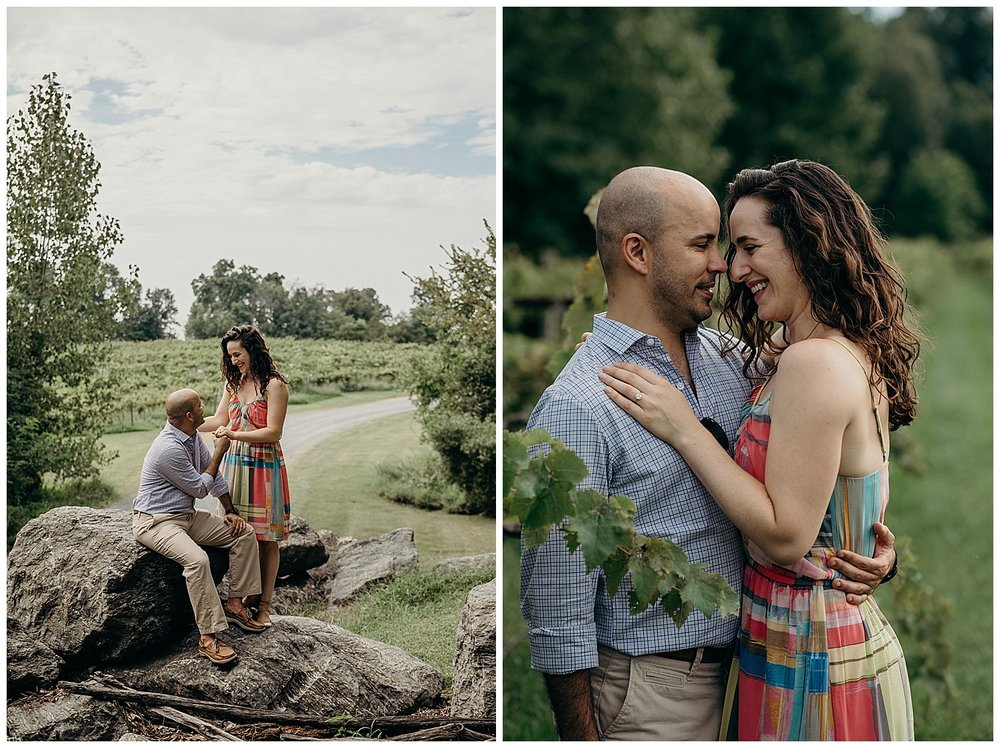 MEGAN-GRAHAM-PHOTOGRAPHY-DC-VIRGINIA-SURPRISE-PROPOSAL-ENGAGEMENT-PARTY-LOST-CREEK-WINERY-LUIS-ISHA9.jpg