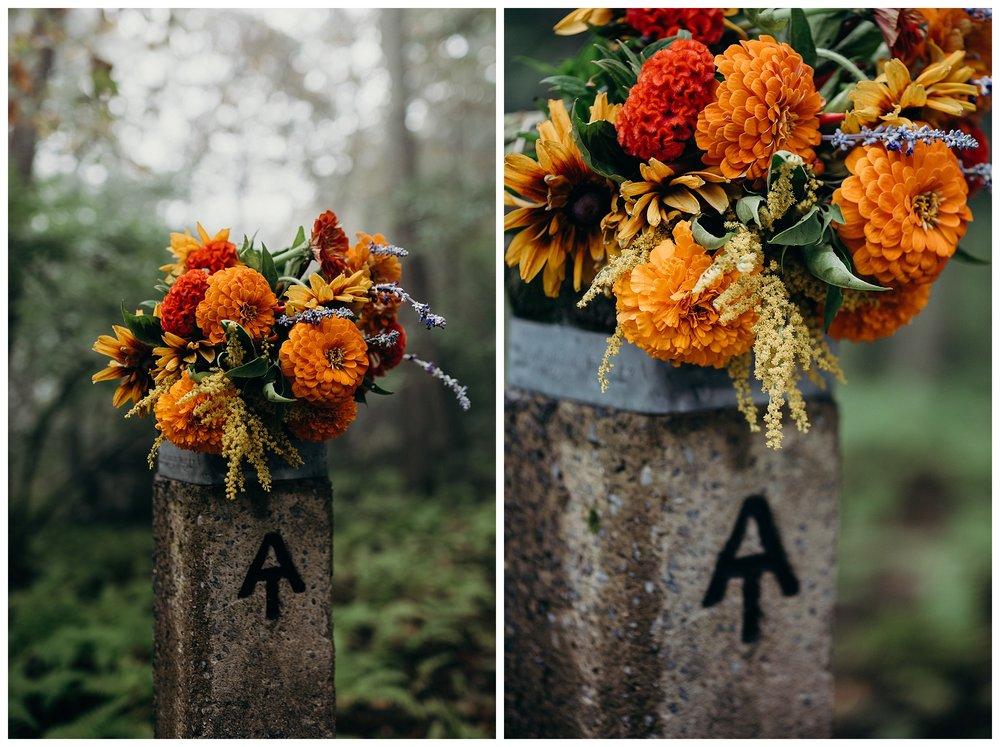 DC-VIRGINIA-WEDDING-PHOTOGRAPHER-SHENANDOAH-NATIONAL-PARK-SKYLAND-ELOPEMENT_0042.jpg