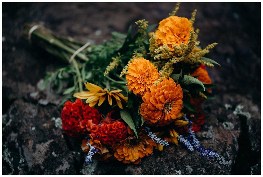 DC-VIRGINIA-WEDDING-PHOTOGRAPHER-SHENANDOAH-NATIONAL-PARK-SKYLAND-ELOPEMENT_0055.jpg