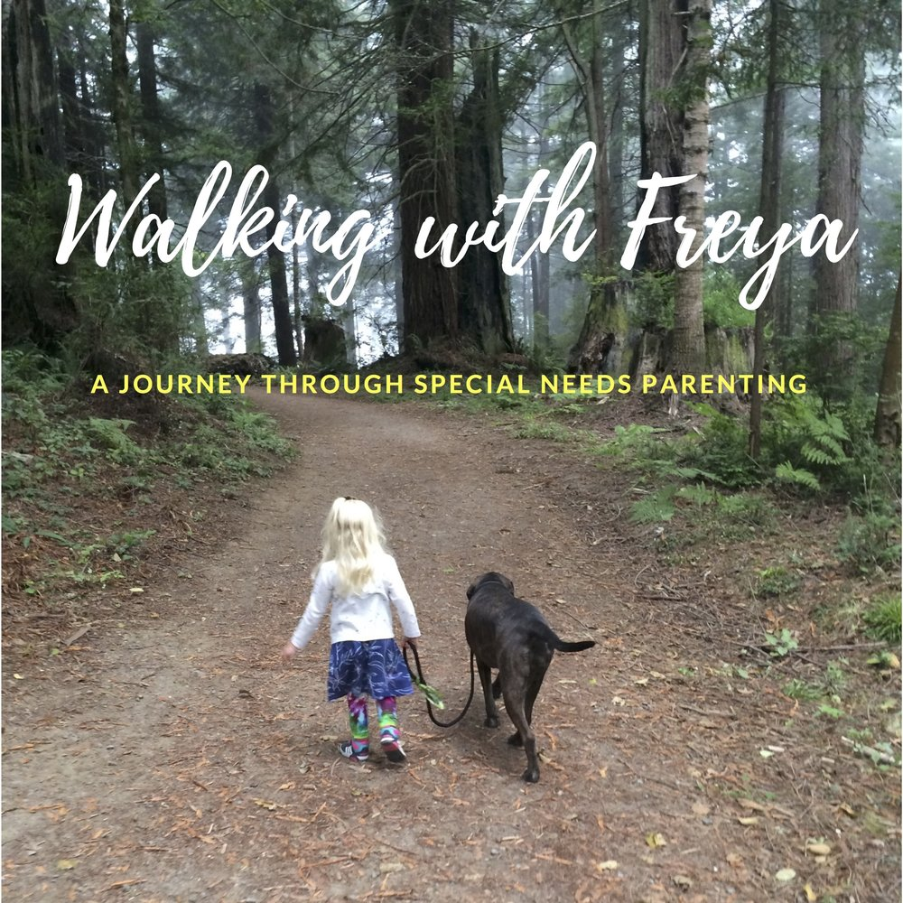 Walking With Freya Cover Art.jpg