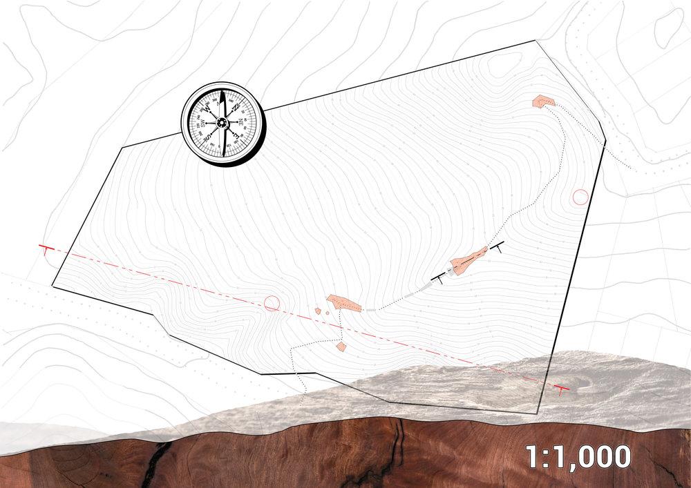 Matiatia, Site Plan