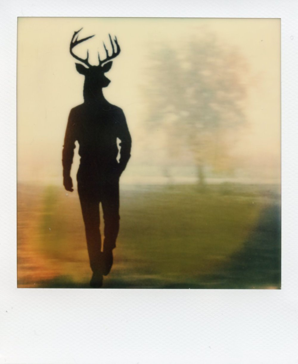 The Daimon Chroniles - RoundAbout - Deer - Alan Marcheselli.jpg