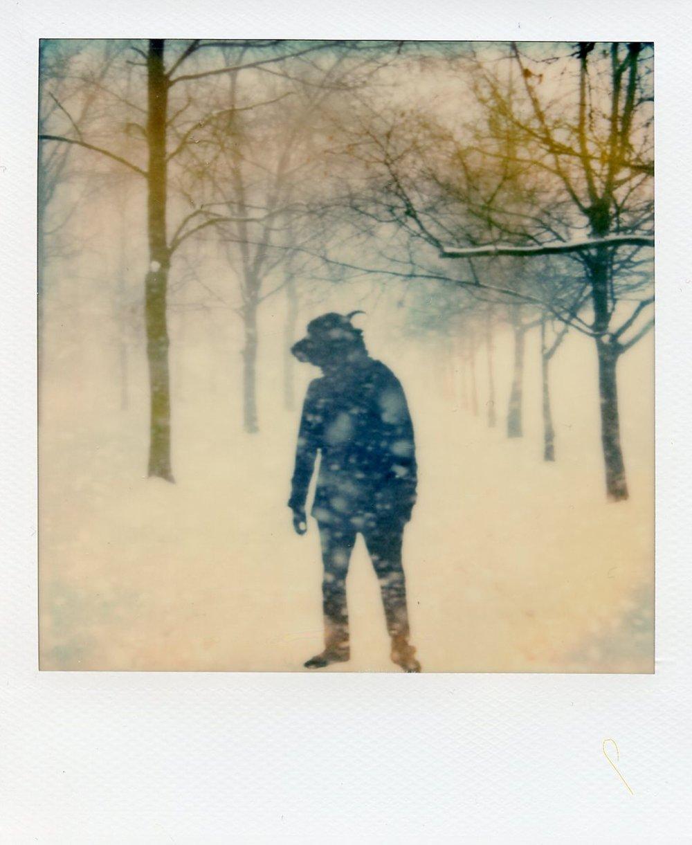 The Daimon Chroniles - Snowfall - Yak - Alan Marcheselli.jpg
