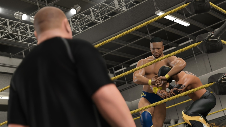 "The new ""MyCareer"" mode starts you at the bottom of the NXT developmental territory, under the watchful eye of WWE trainers."