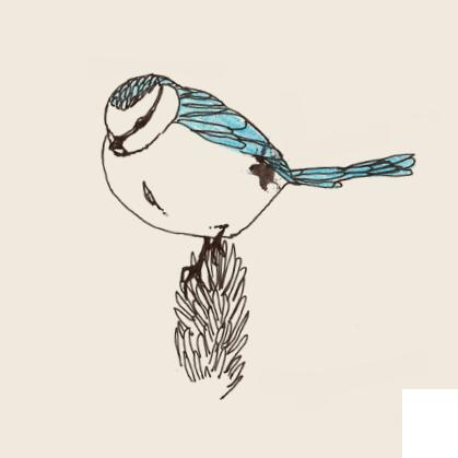 logobird.png?format=1500w