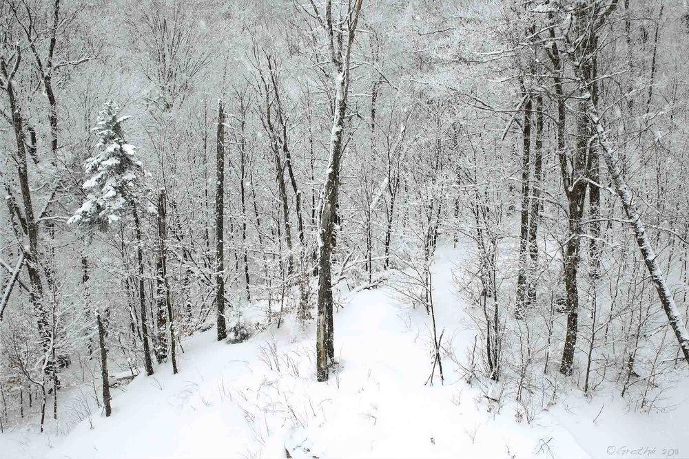 Neige sur la montagne I (2011)
