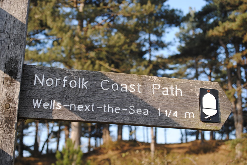 Coastal walks - The 42 mile long Norfolk Coastal Path runs from Hunstanton to Cromer, passing through Holkham, Wells, Blakeney and Cley-next-the-Sea.  Walking the path is a wonderful way of enjoying this stunning stretch of coast.  The coasthopper bus service shadows the Norfolk Coast Path National Trail all the way along from Hunstanton to Cromer, so it's really easy to take the bus, get off for a good walk, and rejoin the bus a bit further along the route.See downloadable maps from the  Norfolk Country Council site.