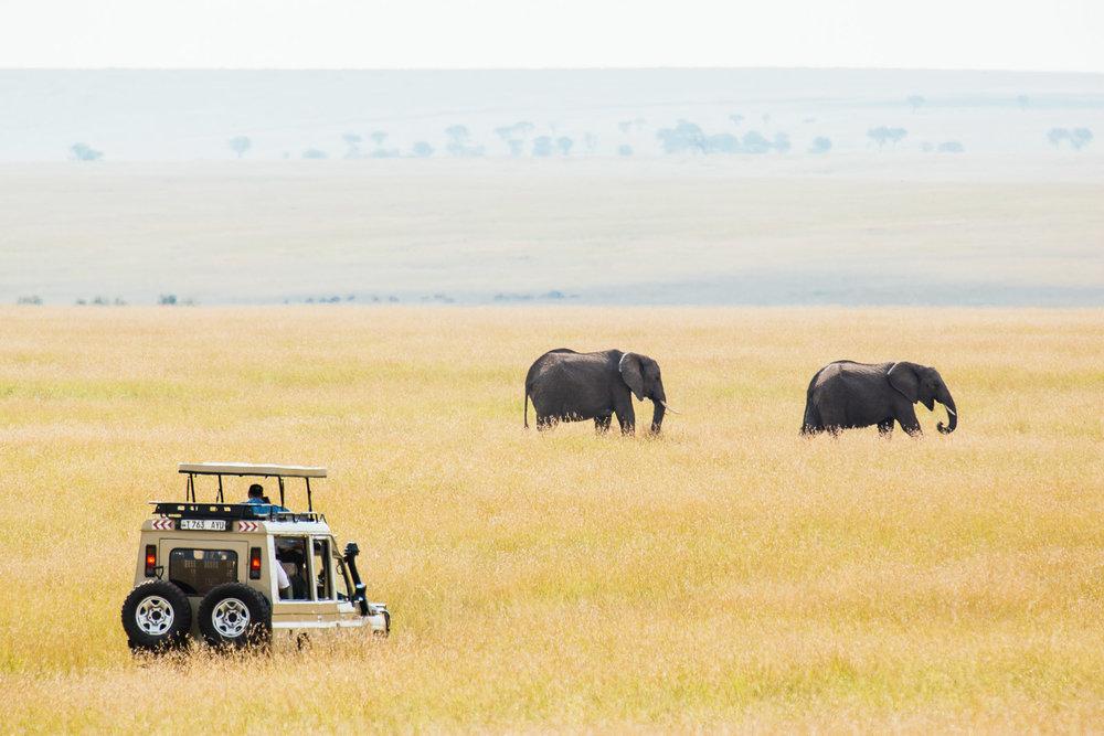 tanzania-africa-travel-photos-adventure-safari-2.jpg