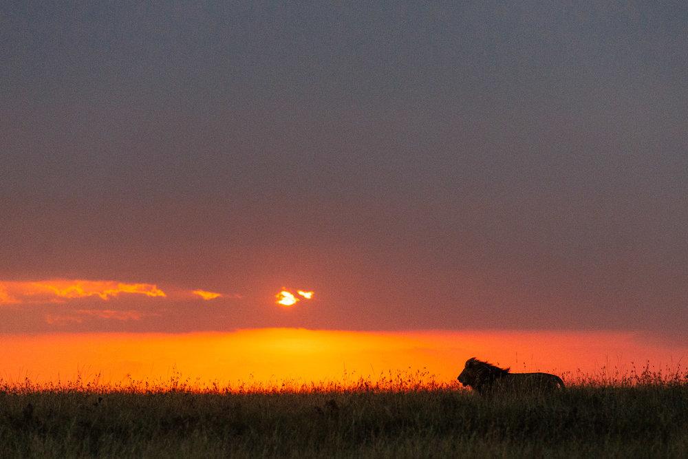 tanzania-africa-travel-photos-adventure-safari-9.jpg