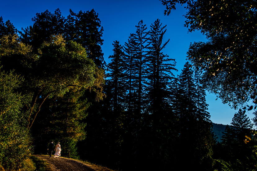 wild_iris_california_wedding_29.jpg