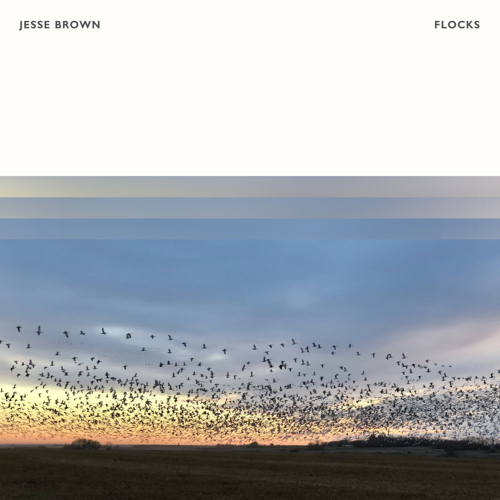 Jesse Brown - Flocks
