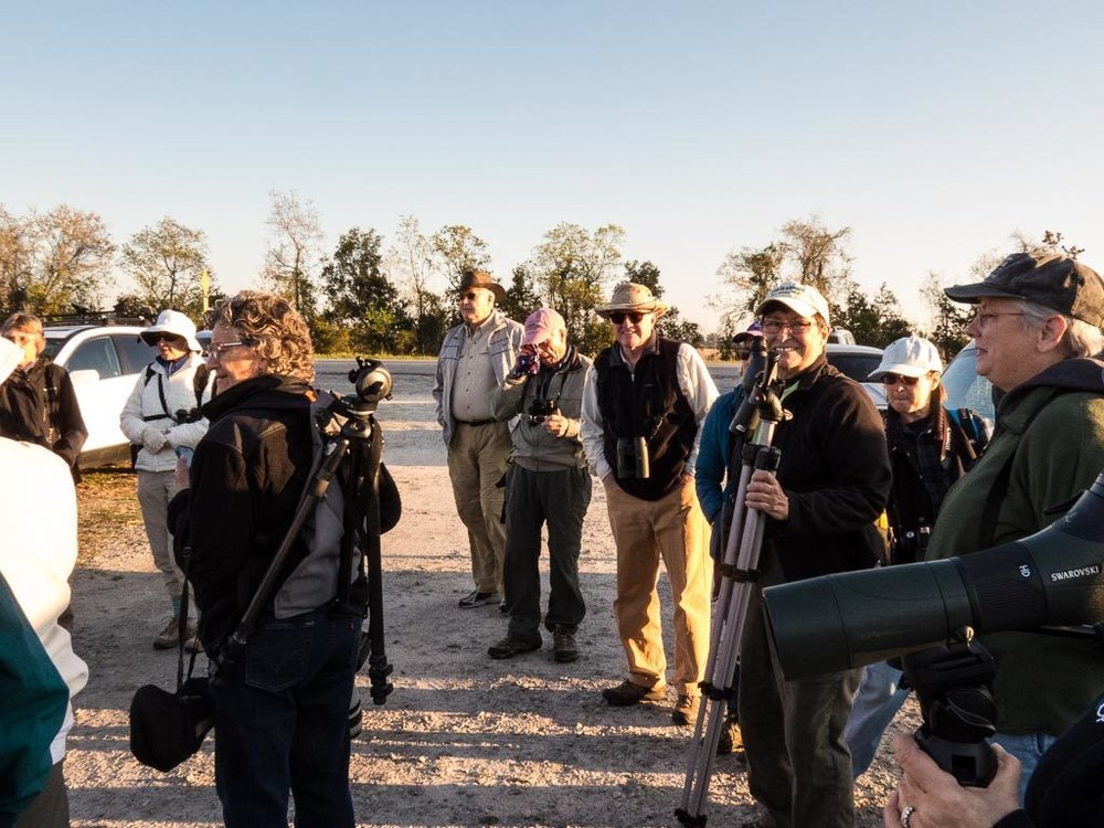 Club outing to Onslow Island, Savannah National Wildlife Refuge