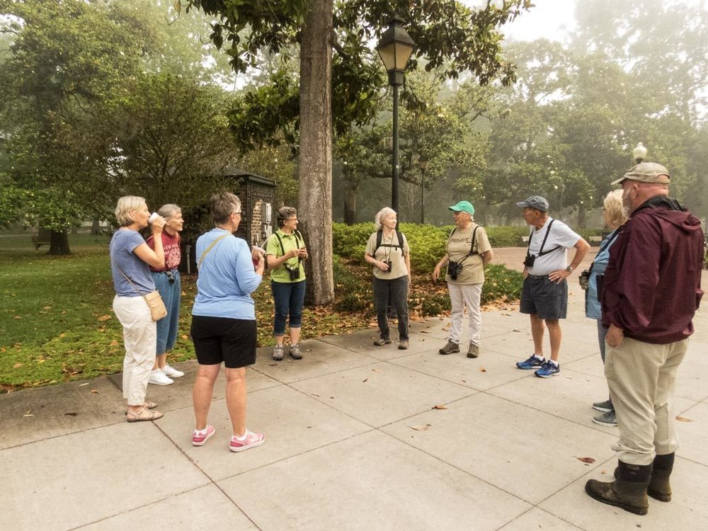 Spring Bird Walks at Forsyth Park - Photo by Mary Lou Dickson
