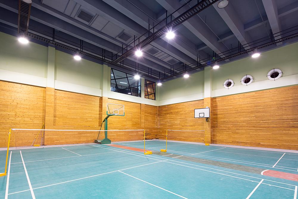 MPH_Badminton.502517670.jpg