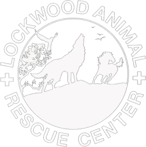 Lockwood Animal Rescue Center